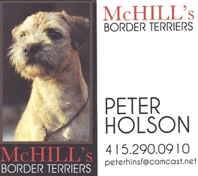 McHill's Border Terriers